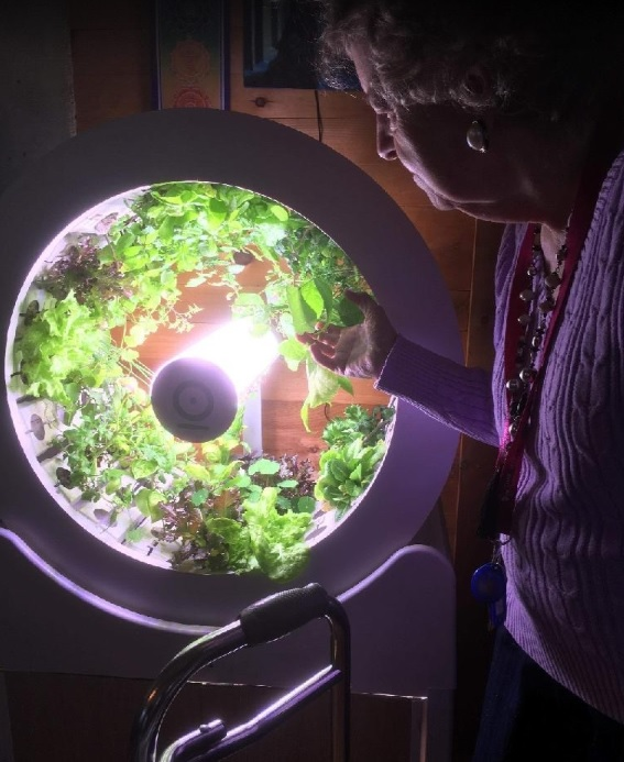 Ogarden Group Best Indoor Gardening System Home Garden